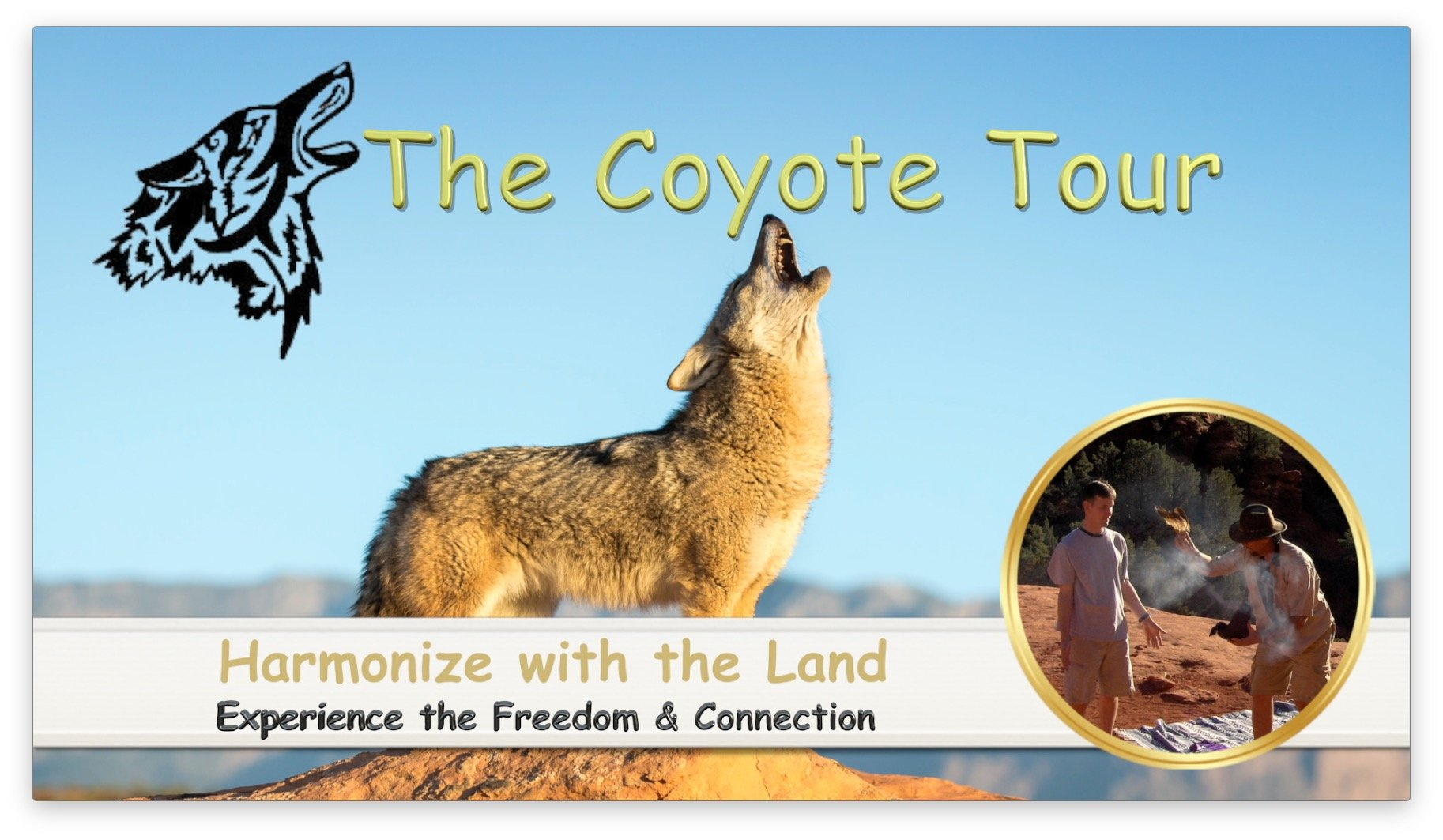 Coyote Tour Logo