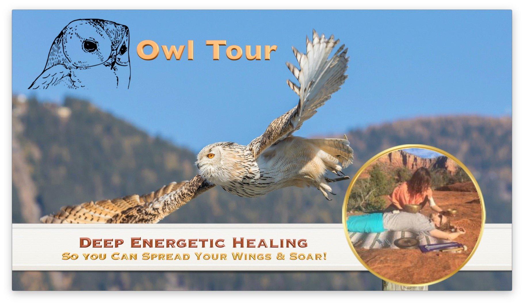 Owl Tour LOGO